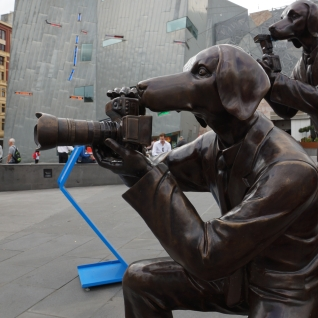 Paparazzi Dogs at Fed Square in Melbourne
