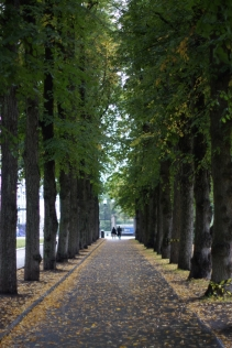Oslo - The Vigeland Park