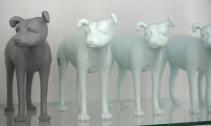 Pies czy Suka Design Store