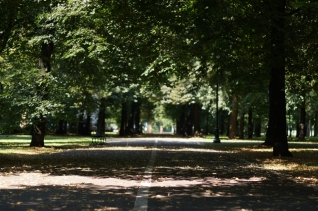 Centralny Park Kultury