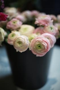 flower - 12