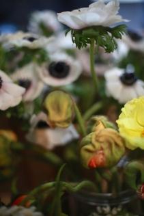 flower - 7