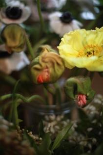 flower - 8