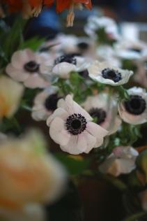 flower - 9